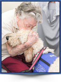 Caring Canines Pet Therapy Program In Md