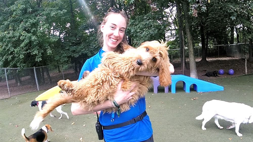 Dogwood Acres staff member holding a dog