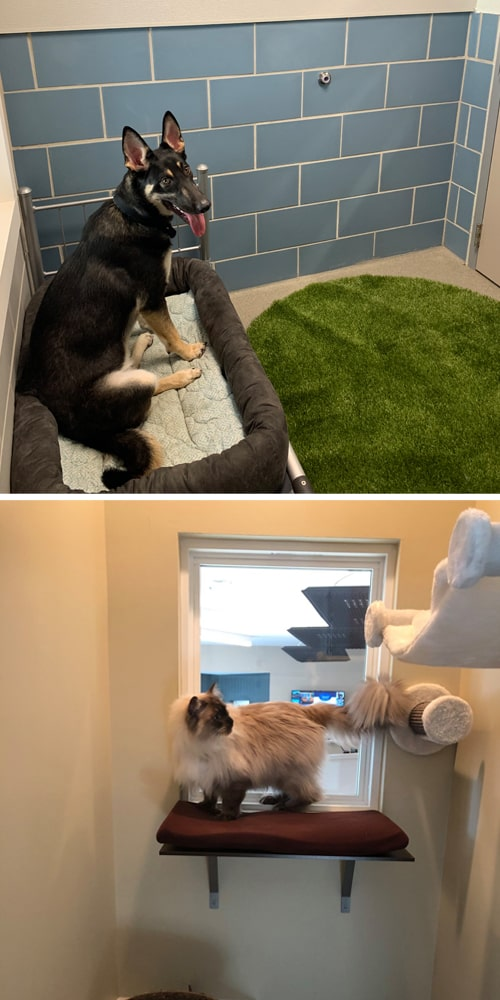 Superior Dog and Cat Lodging