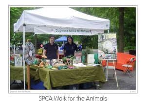 Events SPCA Walk 2010 (01)b