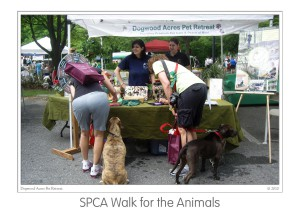Events SPCA Walk 2010 (04)b