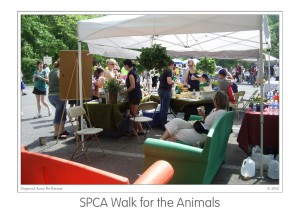Events SPCA Walk 2010 (10)b
