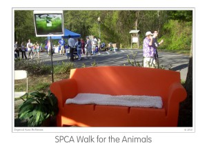 Events SPCA walk 2009 (06)b