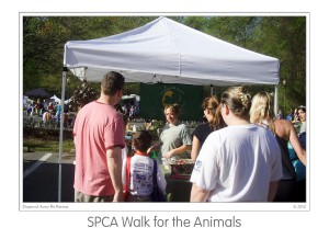 Events SPCA walk 2009 (08)b